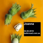 фундук Joanna
